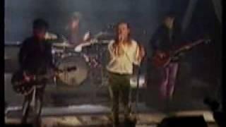 The Primevals - live 1986