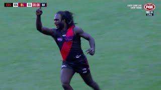 Round 4 2019, Essendon Vs Brisbane Lions Highlights