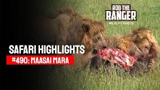 Safari Highlights #490: 29th March 2018 (Latest Sightings) (4K Video)