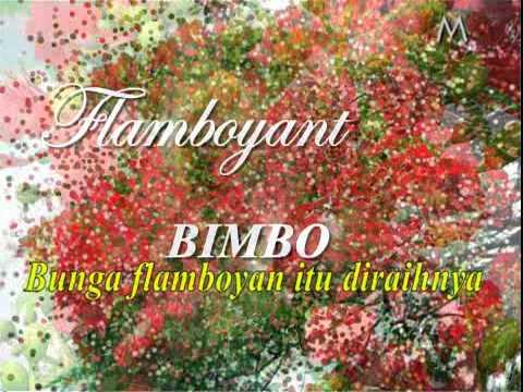 FLAMBOYANT, Bimbo