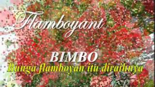 Video FLAMBOYANT, Bimbo download MP3, 3GP, MP4, WEBM, AVI, FLV Agustus 2018