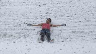 フリドログ 雪の中で真面目な話 thumbnail