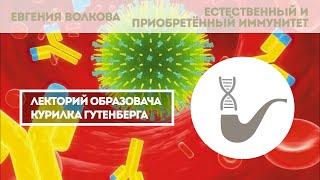 Евгения Волкова - Как работает иммунитет?
