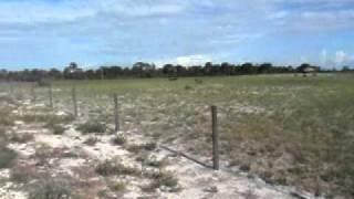 102 SUNBURST ROAD, VENUS FLORIDA 10+ ACRES FARM FOR RENT/LEASE/SALE