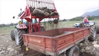 raccoglisassi - raccolta sassi  Cavalli&Cavalli Sardegna