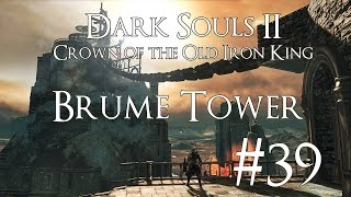 Dark Souls 2 DLC II [CotOIK] PC 100% Walkthrough 39 ( Brume Tower ) Destroying Ashen Idols