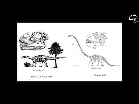 Александр Аверьянов «Филогения динозавров»