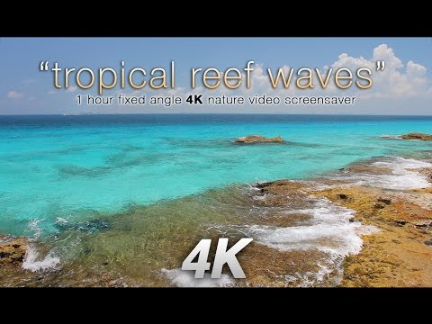 4K Tropical Reef Waves Cancun Mexico  1 HR Nature Relaxation Video UHD