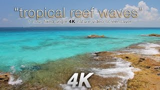 """4K """"Tropical Reef Waves"""" Cancun Mexico  1 HR Nature Relaxation Video UHD"""