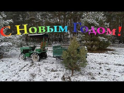 Мототрактором по ёлку)