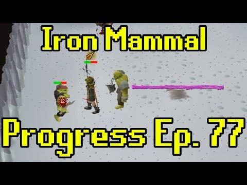 Oldschool Runescape - 2007 Iron Man Progress Ep. 77 | Iron Mammal