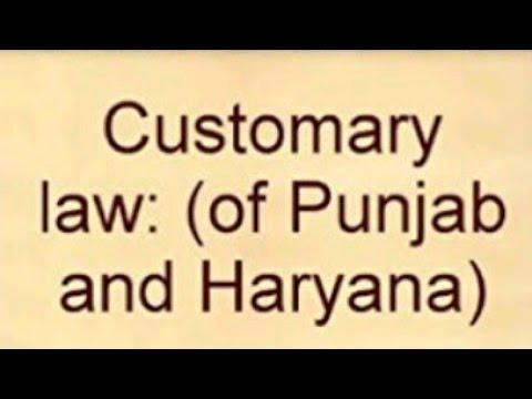 Custom (customary Law) types