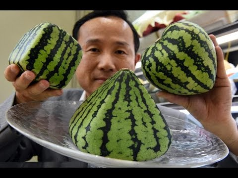 how to say melon in japanese