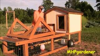 Chicken Tractor - Protecting My Girls