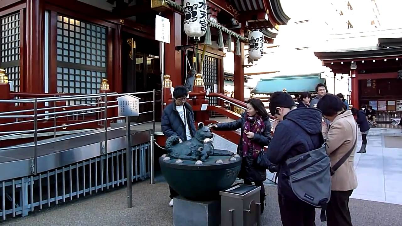 Pictures everyday life in japan 13