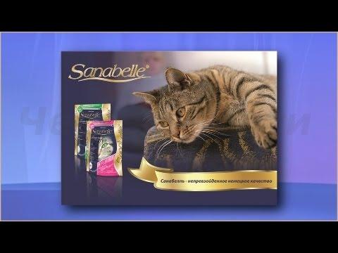 Бош санабелль сухой корм для кошек приобретайте по выгодной цене в интернет магазине anyzoo. Ru на выбор 19 вариантов доставки!. ☎+7(495) 646-8834 скидки, акции!. Bosch sanabelle огромный выбор в зоомагазине энизоо.