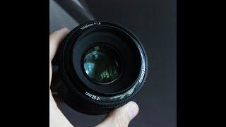 Мой новый объектив - Yongnuo 50mm + canon 550d | Видео тест (Test Video)