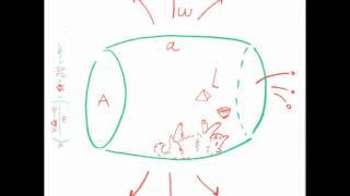 Q & Q 相対性理論