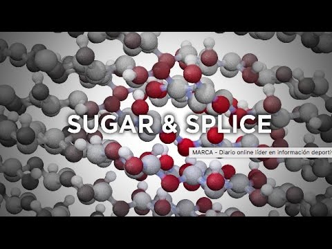 Research Tuesdays: Sugar & Splice