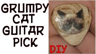 Diy Grumpy Cat Guitar Pick !
