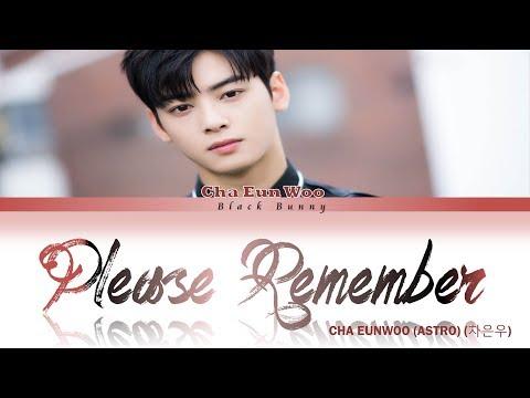 cha-eun-woo-(astro)-(차은우)-–-please-remember-(color-coded-lyrics-han/rom/eng/가사)