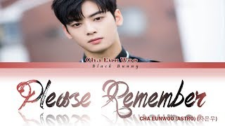 Cha eun woo (astro) (차은우) – please remember (rookie historian goo hae-ryung ost part.6) (color coded lyrics han/rom/eng/가사) by: black bunny thanks for watchi...