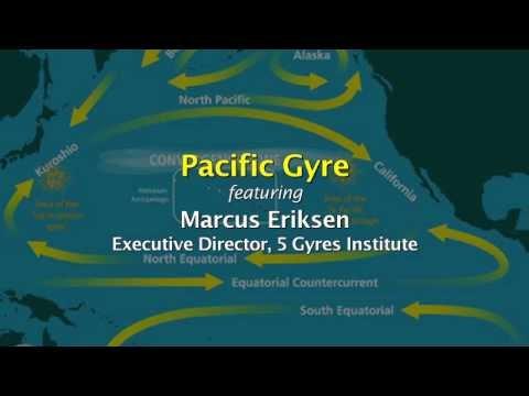 Pacific Gyre
