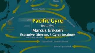 Pacific Gyre