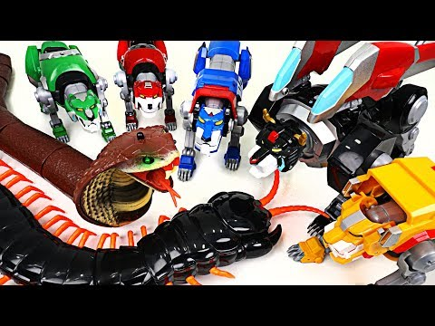 Thumbnail: Giant Cobra and insect appeared! Voltron Legendary Defender! Save the Lion Guard! - DuDuPopTOY