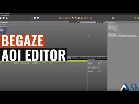 SMI Eye tracking : SMI Tutorial BeGaze AOI Editor