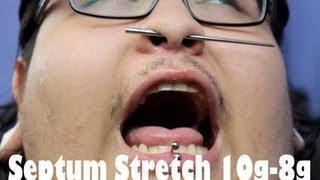 septum stretch 10g 8g