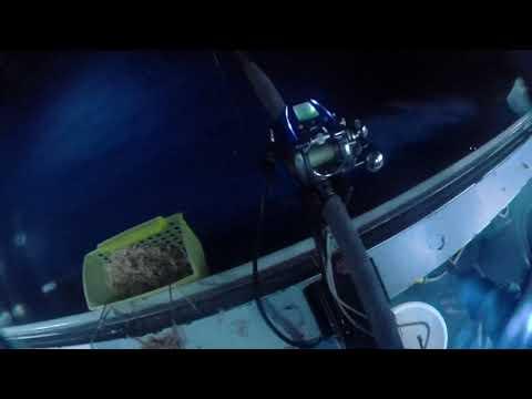 Hong Kong Offshore Fishing  - (6/10)