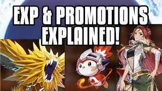 【Epic Seven】 How To Level Up Fast And Promote Units!