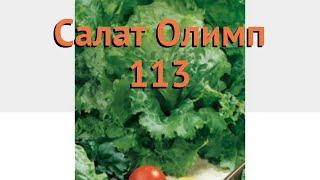 Салат обыкновенный Олимп 113 Кочанный 🌿 обзор: как сажать, семена салата Олимп 113 Кочанный