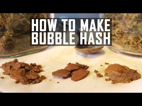 How To Make Bubble Hash Ice Water Cannabis Concentrate: Cannabasics #41