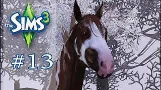 STAJNIA ELDORADO #13 - Pierwszy śnieg