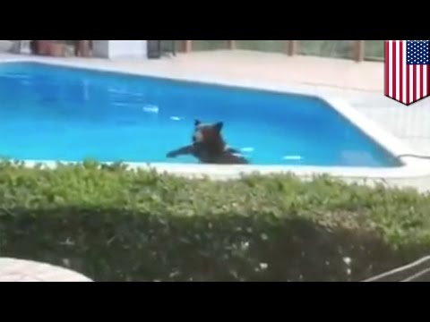 MAIN SERU DI WATERPARK ♥ KOLAM MAINAN OMBAK,SELUNCURAN, EMBER RAKSASA from YouTube · Duration:  9 minutes 24 seconds