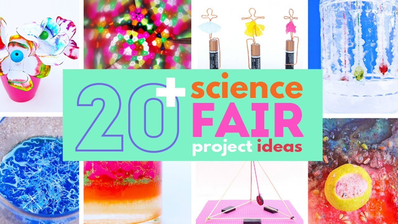20 Science Fair Projects That Will Wow The Crowd Youtube