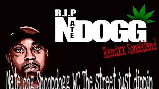 Nate dog Snoopdogg WC The street just dippin Remix dim 2013