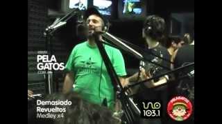 Demasiado Revueltos - Reggae en PelaGatos - Medley x4