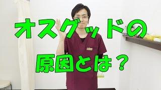オスグッドの原因とは? 和泉市の整体・産後の骨盤矯正『きもと整骨院』
