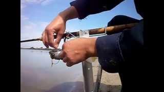 инструкция   рыбалка на автоподсекатель для фидера 002