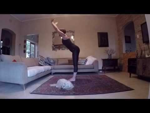 yoga-with-suzi:-sun-salutation