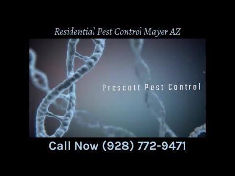 Residential Pest Control Mayer AZ