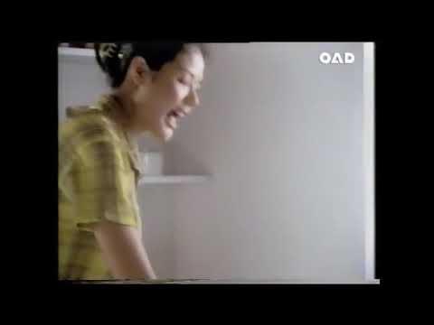 Sunlight Lemon Dishwashing Liquid TVC 30's, Thailand 2543-2000