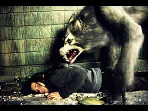 werewolves real or fiction youtube