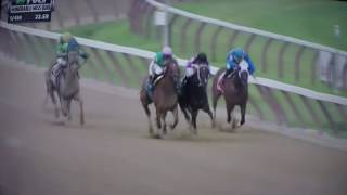 HONORABLE MISS H, (G 2)STAKES 2017 - PAULASSILVERLINING !!!