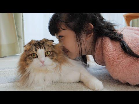 お風呂上りのやさぐれ猫も娘にはふわふわの毛を堪能させてくれます