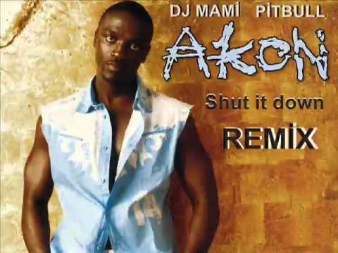 DJ MAMI Pitbull Ft Akon Shut It Down REMIX 2010