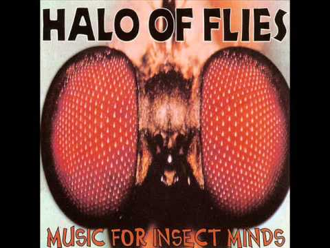 Halo Of Flies - Tired & Cold